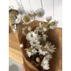 Fleur séchée ton blanc